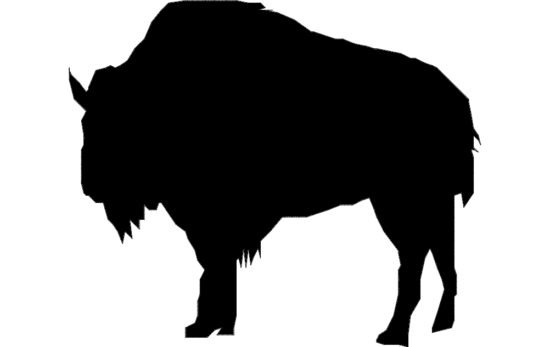 Buffalo Clip dxf File