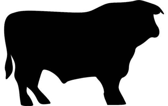 Bull dxf File