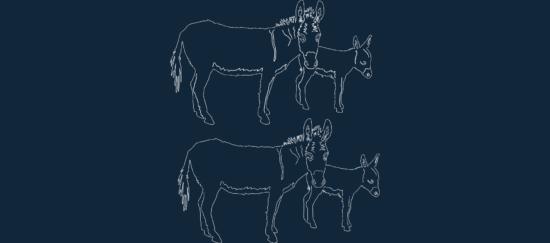 Animal Donkeys dxf file